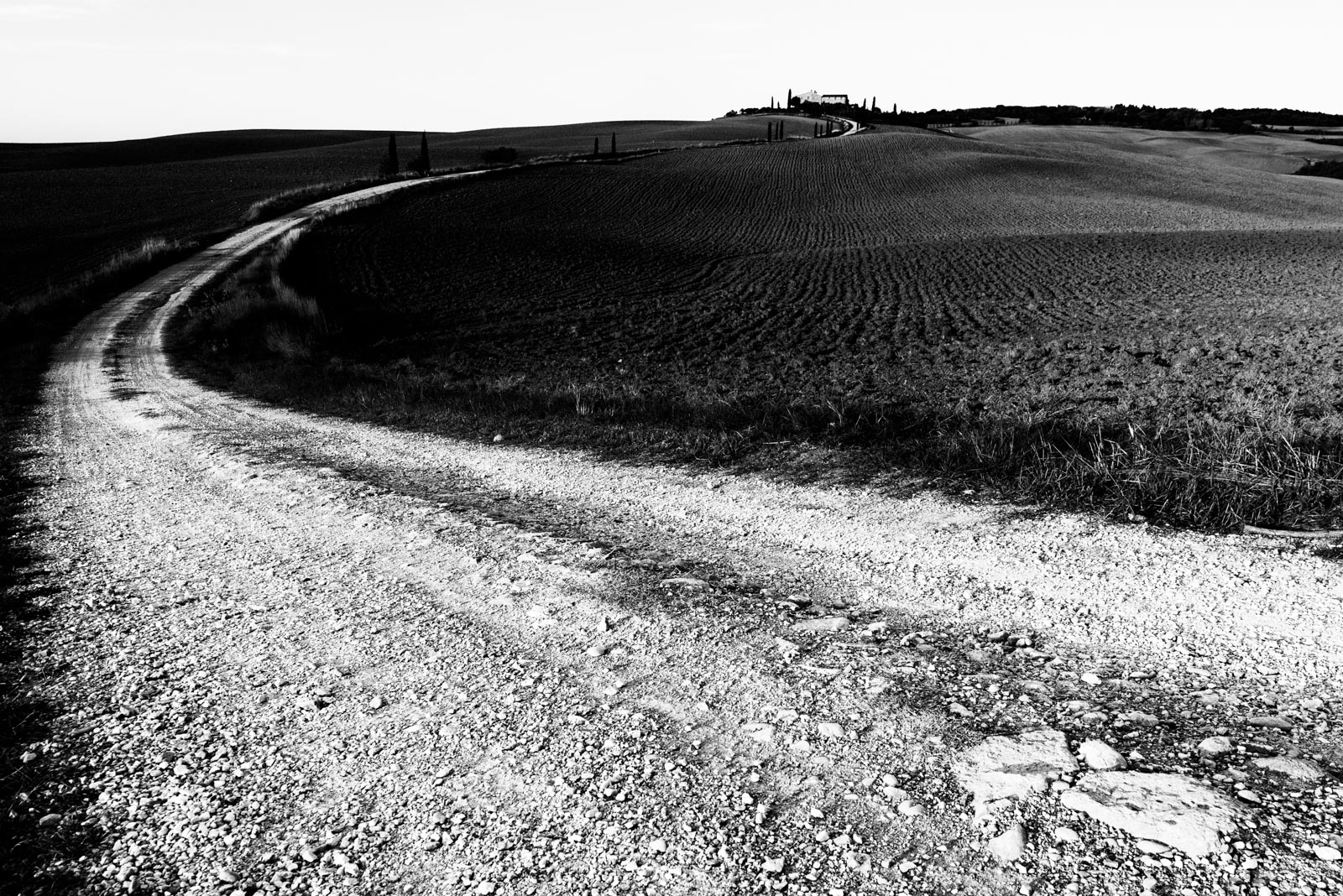 Le Strade Bianche - Parco Val d'Orcia